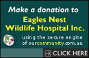 Donate_to_Eagles_Nest